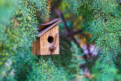 Brown wooden birdhouse hanging from tree with foliage blurred in background. Birdhouse Stock Photos