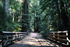Brown Wooden Bridge by the Mountain during Daytime Royalty Free Stock Photo