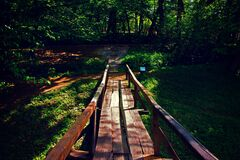 Brown Wooden Bridge Near Forest during Golden Hour Stock Photo