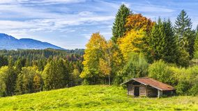 Brown Wooden Cottage Near Forest stock photo