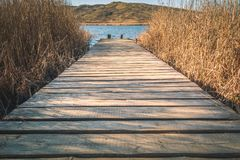 Brown Wooden Dock With Brown Grasses Stock Image