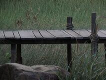 Brown Wooden Dock Near Green Grass Field Royalty Free Stock Photo