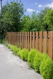 Brown wooden fence with green shrubs bushes in countryside Stock Image