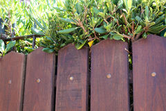 Brown wooden fence Stock Photos