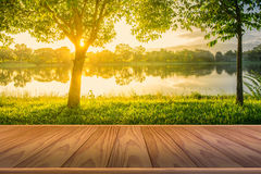 Brown wooden floor with Trees near lake and green grass. Where light shines Royalty Free Stock Images