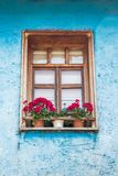 Brown Wooden Framed Windows on Blue Wall Royalty Free Stock Images