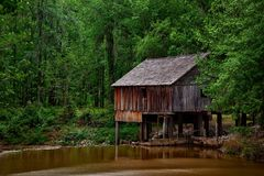 Brown Wooden Shed Surrounded by Trees Stock Photography