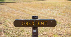 Brown wooden sign in grassy field with obedient written on it. Brown wooden sign in grassy field with word obedient written on it stock photos