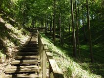 Wooden stairs going on hill top, Lithuania Stock Photo