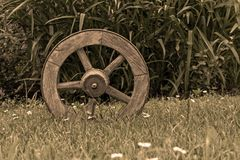Brown Wooden Wheel on Top of Green Grass Royalty Free Stock Image