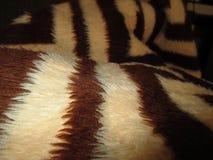 Brown wool blanket close up. Photo of brown wool wrinkled blanket close up stock photography