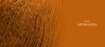 Brown wool thread macro texture material pattern. Blur background stock images