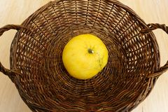 Brown woven basket with a large grapefruit at the bottom stock images