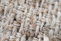 Brown woven sack tecture background Royalty Free Stock Images