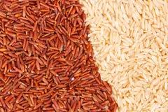 Brown y arroz rojo como fondo, concepto libre de la comida del gluten sano Imagen de archivo