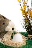 Brown y conejito de pascua blanco Fotografía de archivo