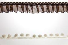 Brown y cordón blanco Fotos de archivo