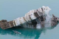 Brown y glaciar blanco en el agua del Glacier Bay, Alaska Imágenes de archivo libres de regalías