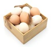 Brown y huevos blancos del pollo, plumas Imágenes de archivo libres de regalías
