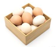 Brown y huevos blancos del pollo, plumas Fotografía de archivo