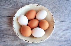 Brown y huevos blancos en el cuenco blanco Imagen de archivo
