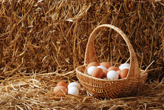 Brown y huevos blancos en una cesta imagenes de archivo