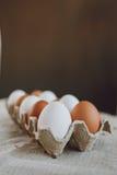 Brown y huevos de Pascua blancos fotos de archivo libres de regalías