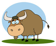Brown yak on grass. Cartoon Character Brown Yak On Grass,background Royalty Free Stock Photos