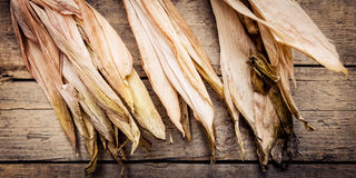Brown and yellow corncob. On wooden background, panorama Royalty Free Stock Photo