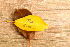Brown and yellow fallen autumn leaves with inscription THE END on the wooden background stock photos
