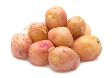 Brown young potato isolated Royalty Free Stock Images