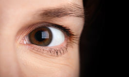 Brown young woman's eye Stock Images