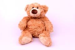 Brown zabawki niedźwiedź na bielu Fotografia Stock