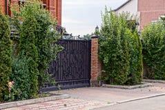 Brown zamykał bramy i część ogrodzenie przerastający z zieloną roślinnością zdjęcia royalty free