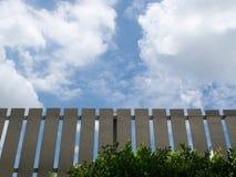 Brown-Zaun With Green Leaves und blauer Himmel-Hintergrund Stockfotos