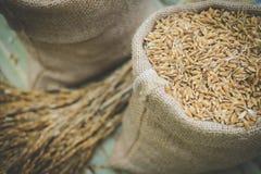 brown zbożowi ryż w burlap worka torbie Zdjęcie Royalty Free