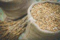 brown zbożowi ryż w burlap worka torbie Fotografia Royalty Free