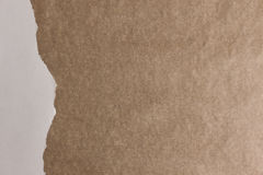 browne 免版税库存图片