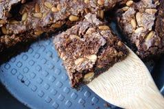 Brownie ξύλων καρυδιάς σοκολάτας και καρυδιών πεύκων Στοκ φωτογραφία με δικαίωμα ελεύθερης χρήσης