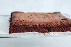 Brownie σοκολάτας μερίδες στο άσπρο υπόβαθρο Στοκ Εικόνες