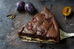 Brownie σοκολάτας cheesecake στο σκοτεινό υπόβαθρο Εκλεκτική εστίαση Στοκ φωτογραφία με δικαίωμα ελεύθερης χρήσης