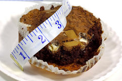 Brownie Royalty Free Stock Photo