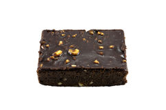 Brownie. Royalty Free Stock Photography