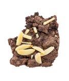 'brownie' avec une morsure d'isolement sur le fond blanc Image stock
