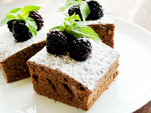 Brownie with berries Royalty Free Stock Photo