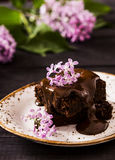 Brownie with blackcurrant Royalty Free Stock Images