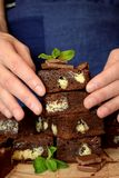 Brownie cake squares stock photography