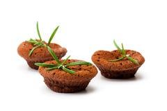 Brownie casalinghi del cioccolato al forno nelle forme del muffin isolate in w immagini stock libere da diritti