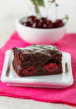 Brownie with cherries Stock Images