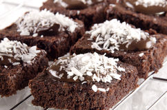 Brownie with chocolate and coconut flakes Royalty Free Stock Images